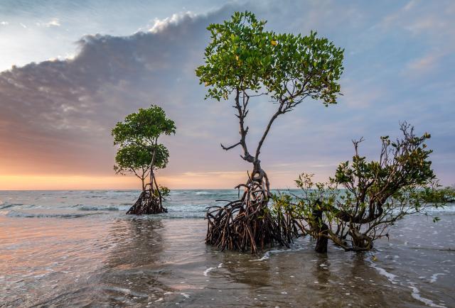 El cambio climático pasa factura a América Latina y el Caribe