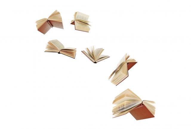 La voz de los escritores: libro y cultura