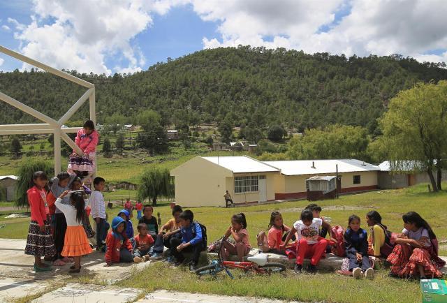 Tener clases presenciales o el peligro de caer en el sicario en México