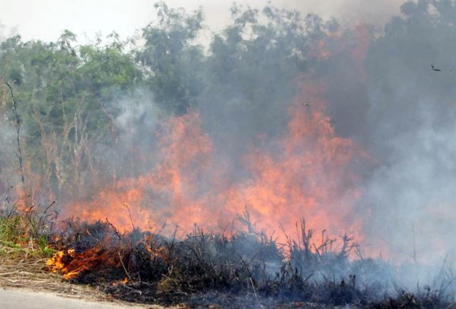 Incendios forestales devastan miles de hectáreas en el centro de Argentina