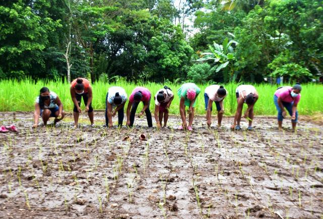 Mujeres rurales aprenden sobre cultivos en la Escuela Campo del Mides